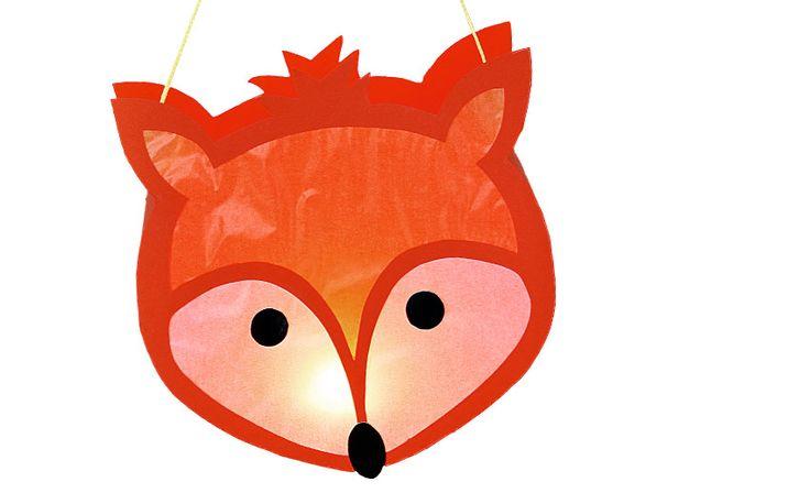 Oben, da leuchten die Sterne und unten ... da leuchtet dieses süße Fuchsgesicht…