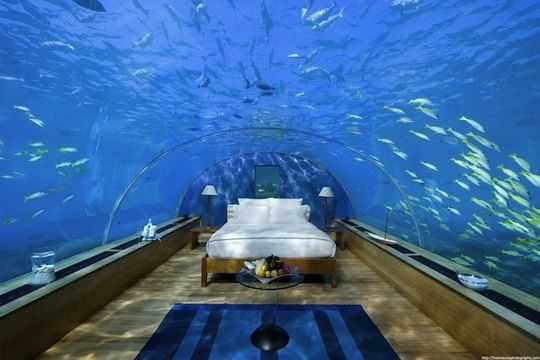 Walkways in aquariums are impressive, but they've got nothing on this underwater hotel bedroom in the Maldives. Can you imagine waking up with the Indian Ocean and its sea life floating around you?  The Maldives, a chain of atolls located about 250 miles south of India, are notable for being strikingly beautiful and also being the lowest country in the world. On average, the land is only about two feet above sea level.