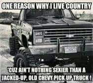 Truck Quotes 17 Best Chevy Truck Quotes Images On Pinterest  Chevrolet Trucks .
