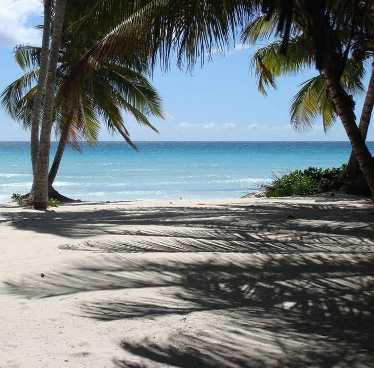 400 Best Dominican Republic Images On Pinterest