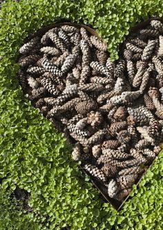 Sammal, jäkälä, marjat, oksat ja muut luonnontuotteet ovat hyvää materiaalia pihakoristeisiin. Katso Viherpihan ideat luonnonmateriaaleista tehtyihin koristeisiin.