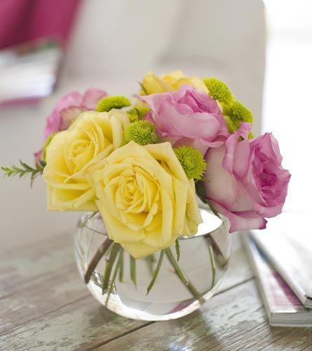 Roses Winnipeg Winnipeg   Academy Florists   (877) 588-4822