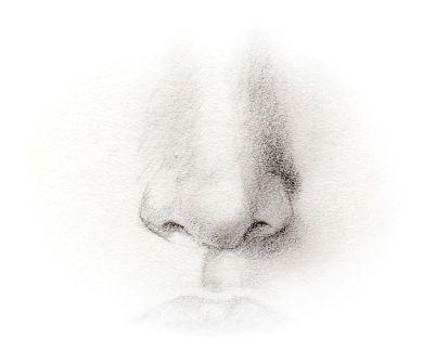 рисунок носа: 19 тыс изображений найдено в Яндекс.Картинках