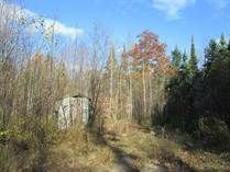 SOLD!! Lake Access Lot with Well $29,900.
