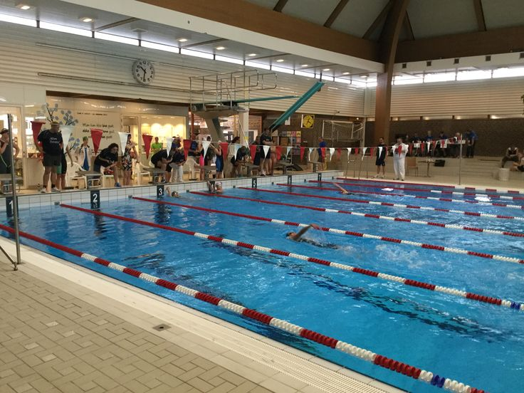 1 augustus 2015, IYG Aalborg zwemwedstrijden