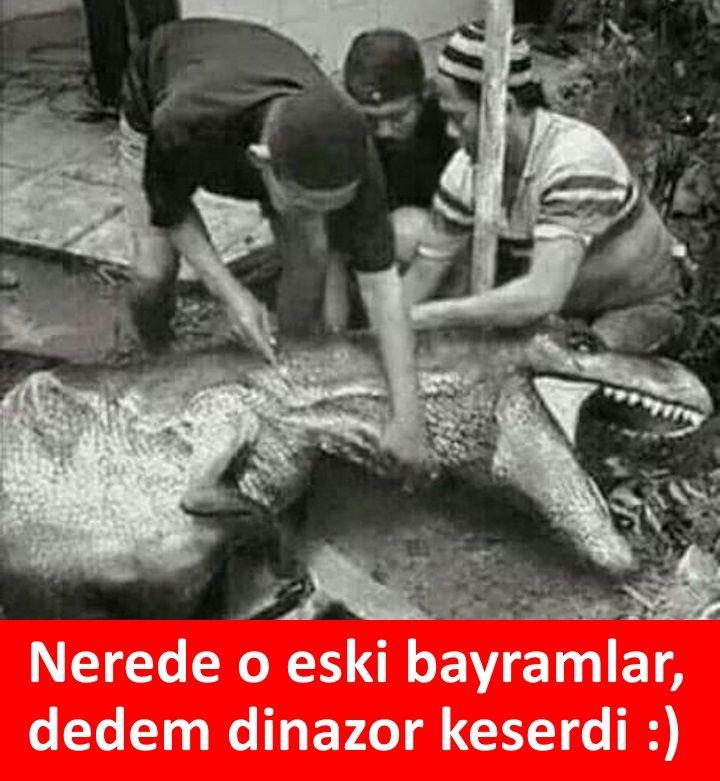 Nerede o eski bayramlar, dedem dinazor keserdi. :) #karikatür #mizah #matrak #komik #espri #şaka #gırgır #komiksözler #caps #bayram #kurban #kurbanbayramı