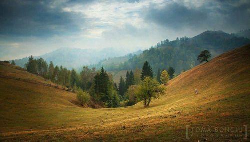 Viata la tara - Magura, jud. Brasov    Foto: Toma Bonciu    Surprising Romania - Împreună promovăm frumusețile României!