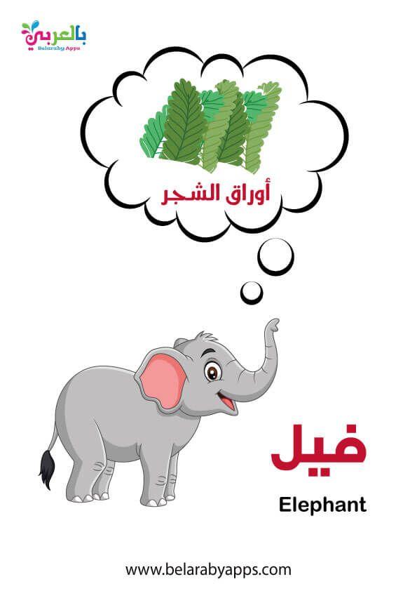 بطاقات أسماء حيوانات الغابة بالصور وحدة الحيوانات رياض اطفال بالعربي نتعلم In 2021 Elephant Mario Characters Character