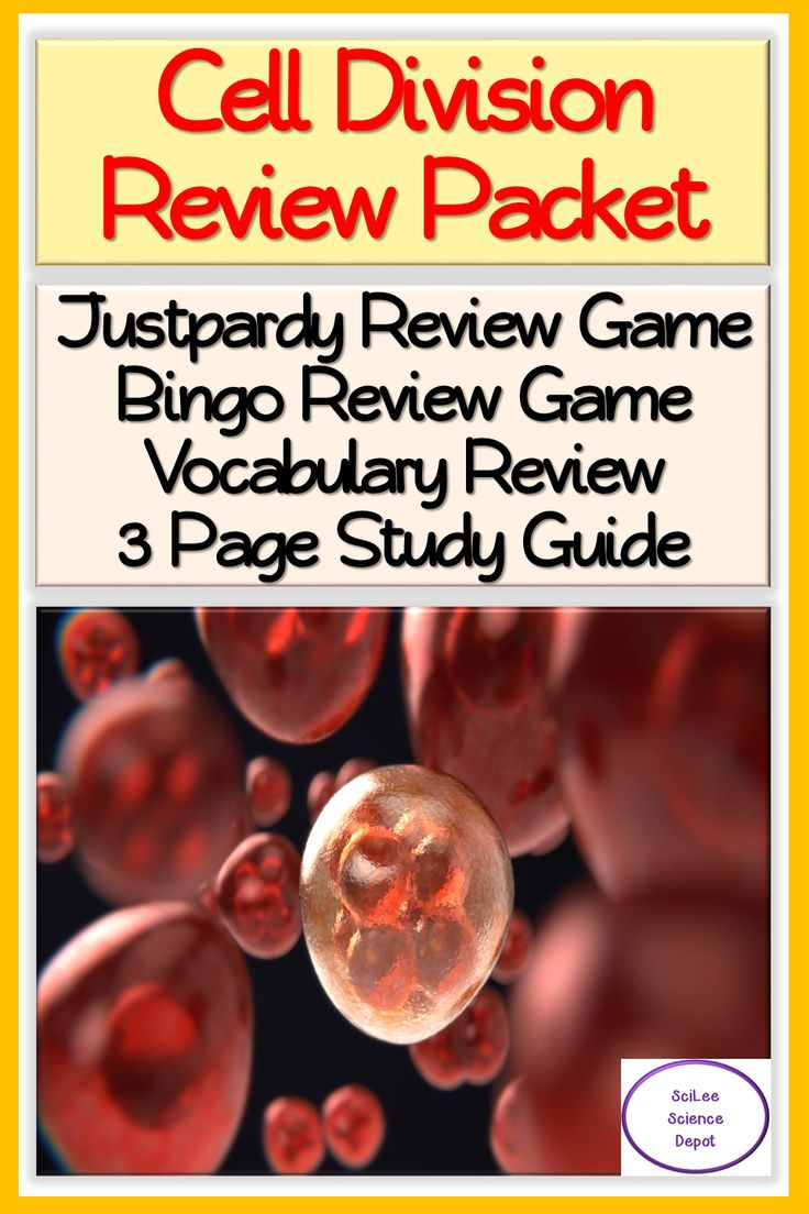 Cell Division Review Packet Justpardy, Bingo, Vocabulary