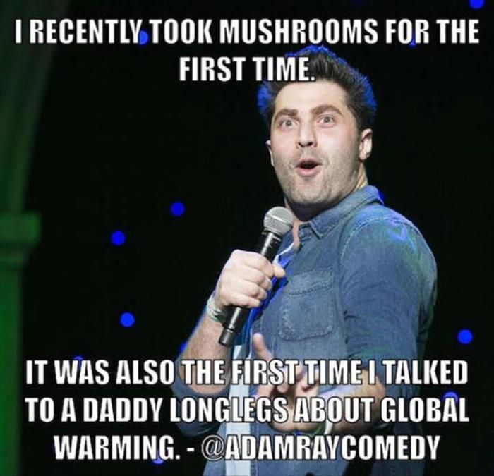 The Best Of Comedian Quotes  27 Pics
