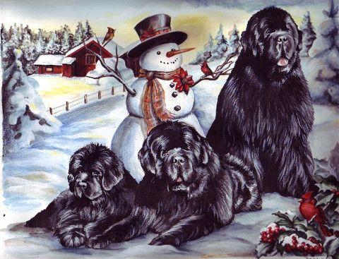 """Newf Christmas Cards"" (Maleo) - 12 cards"