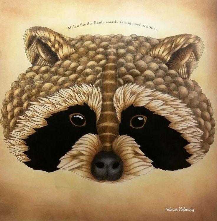 Racoon Milliemarotta Milliemarottabooks Animalkingdom Colour