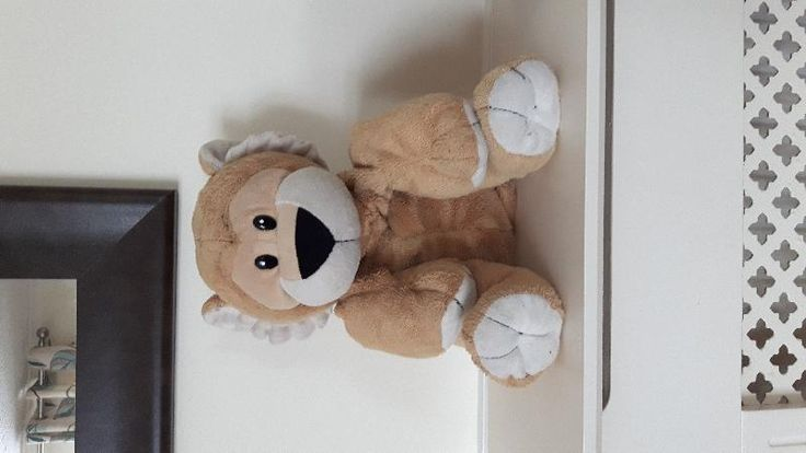 Found on 26 Jul. 2016 @ Meriden park chelmsley wood B37 . Found today on the gym equipment at the park Didn't know what to do with him but didn't want to risk leaving him incase older children threw him in the Lake or the bin so have bought him home to ke... Visit: https://whiteboomerang.com/lostteddy/msg/vlsz5p (Posted by Lisa on 26 Jul. 2016)