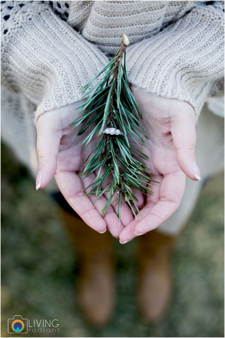 Living Radiant Photography // Maryland Best Wedding Photographer // Christmas Tree Farm Engagement Session