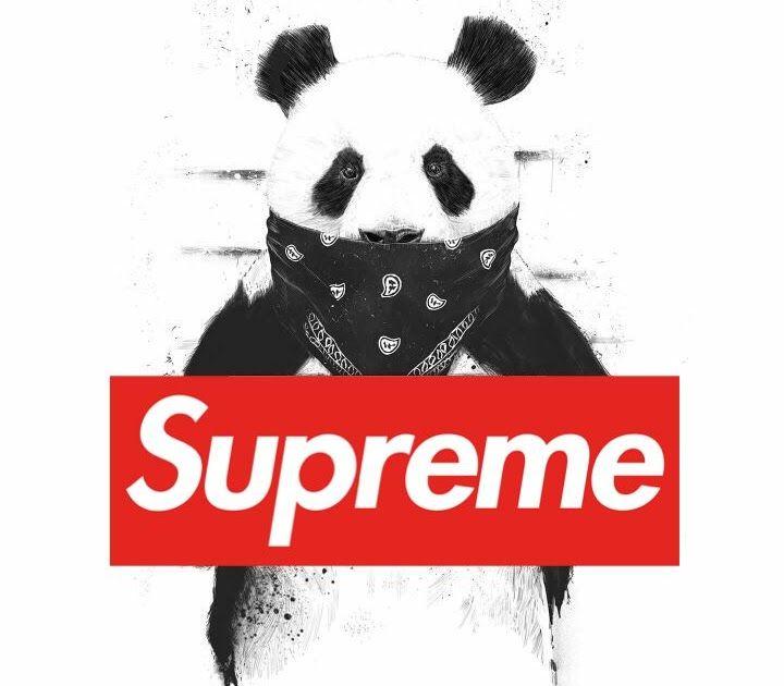 Gambar Supreme Panda Kumpulan Gambar HD