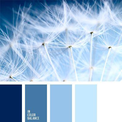 azul aciano pálido, azul oscuro y celeste, celeste claro, color azul celeste, colores fríos, matices del celeste y azul oscuro, paleta de colores para decorar una boda, paleta de colores para una boda.