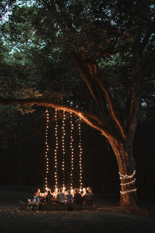 Outdoor dining eating with fairy lights Al fresco woods