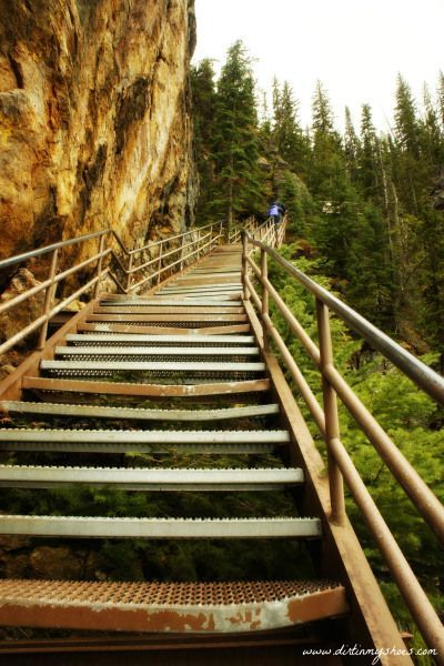 This trail is adventurous and challenging but provides incredible views of a beautiful waterfall!   Uncle Tom's Trail    Yellowstone National Park    Dirt In My Shoes