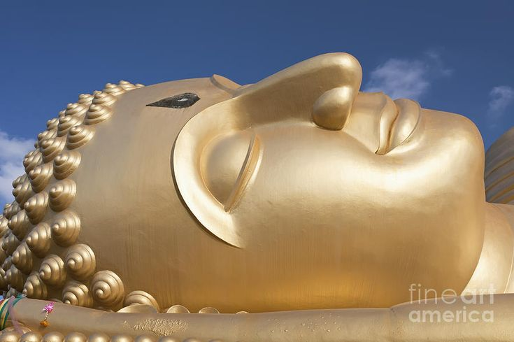Large Buddha Statues For Sale | ... Buddha Statue Photograph - Head Of A Giant Reclining Buddha Statue