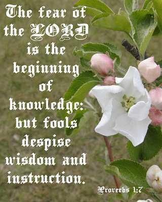 The FEAR OF THE LORD is the beginning of wisdom: The Lord, Proverbs 17, Despi Wisdom, God Words, Scripture, 1 7 Kjv, Bible Verses, Proverbs 1 7, Fools Despi