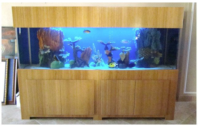 plywood fish tank plans woodworking projects plans