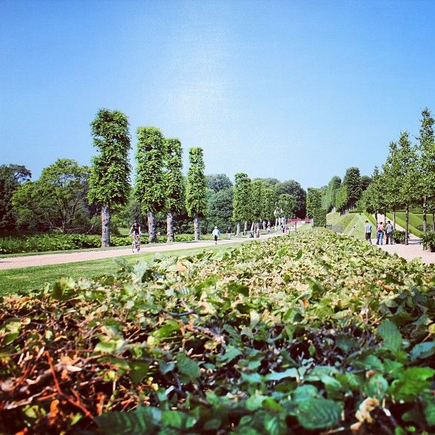 mirza700 #Sweden #sverige #malmö #skåne #västra_hamnen #flower #nature #natur #landscape #landskap #love #ff #follow #best_shot1 #canon #canon_lens #foto #photography #canon_photography #canon_photographic #fotografi #fotografiar #instagram #ig_sweden #wu_sweden #wu_europe #worldunion #best_photos1 #Frederiksborgslot #danmark