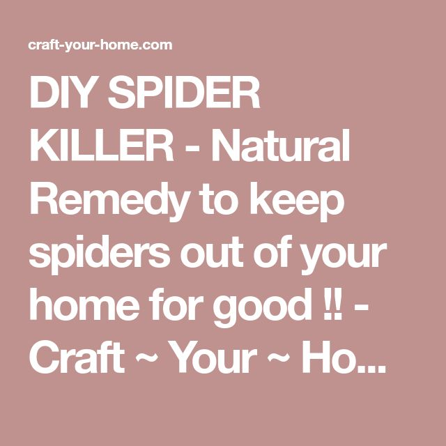 DIY SPIDER KILLER - Natural Remedy to keep spiders out of your home for good !! - Craft ~ Your ~ Home