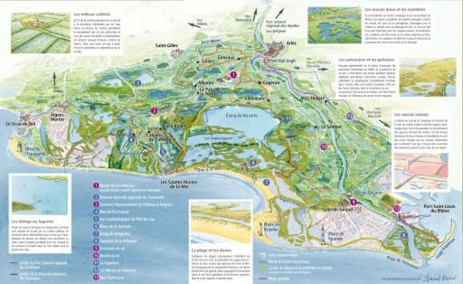 Une carte touristique à télécharger - Parc naturel régional de Camargue