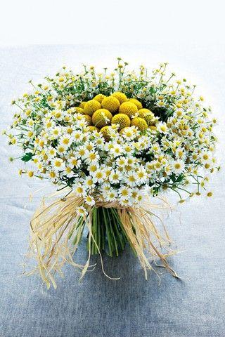 Pretty use of flowers of the fields... Ramo de novia rústico con decoración de margaritas y camelias.