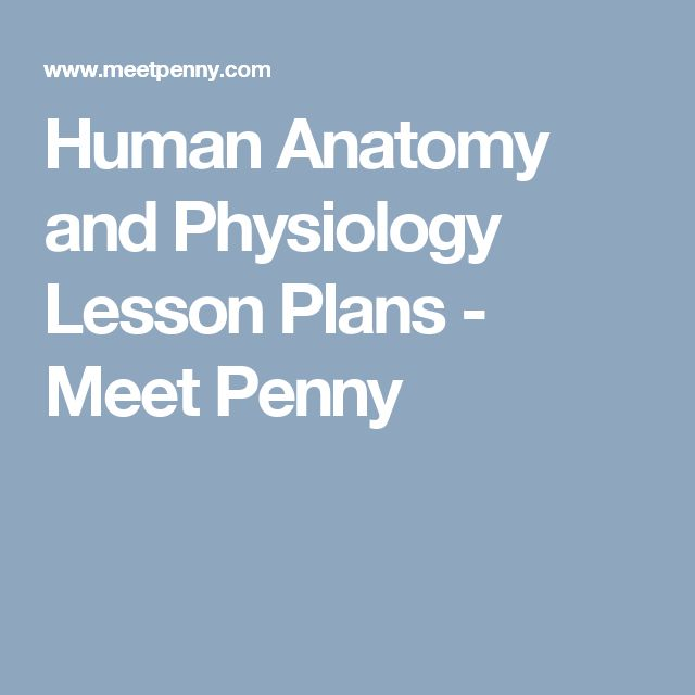 Human Anatomy and Physiology Lesson Plans - Meet Penny