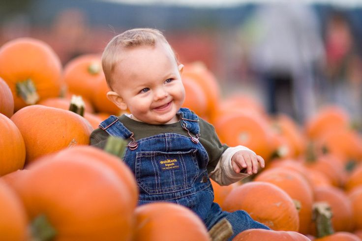 pumpkin patch baby photo shoot - Google Search