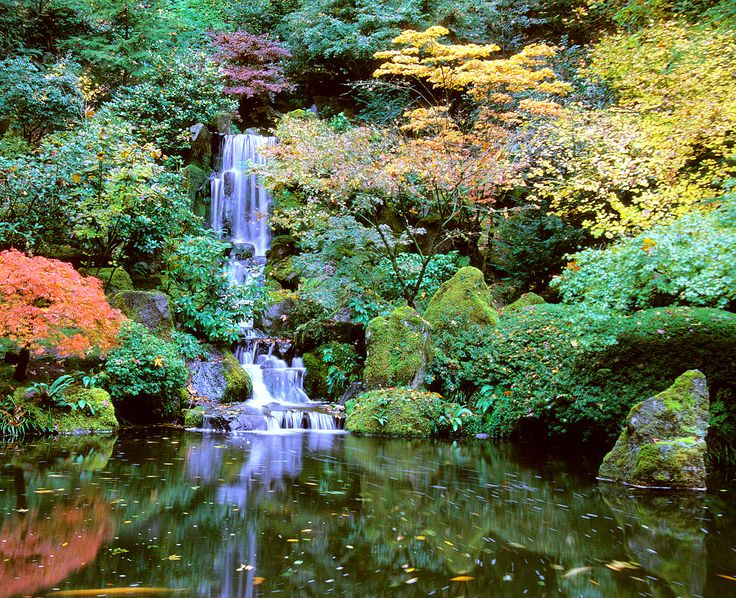 An authentic example of Japanese landscaping, the Portland Japanese Garden is a haven of tranquil beauty with an unsurpassed view of Mount Hood.