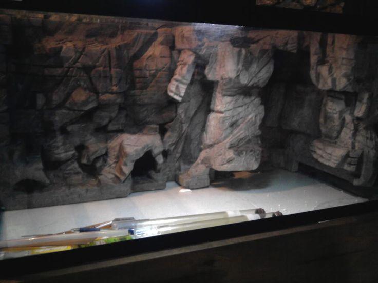 bild aquarium anzeigen wallpapers - photo #29
