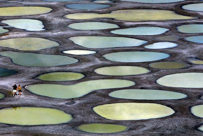 Spotted Lake, located in British Columbia, Canada. (Unusual Landscapes) Throughout the year, the lake changes color, but in the dry season form numerous pools of water in white, green and yellow.