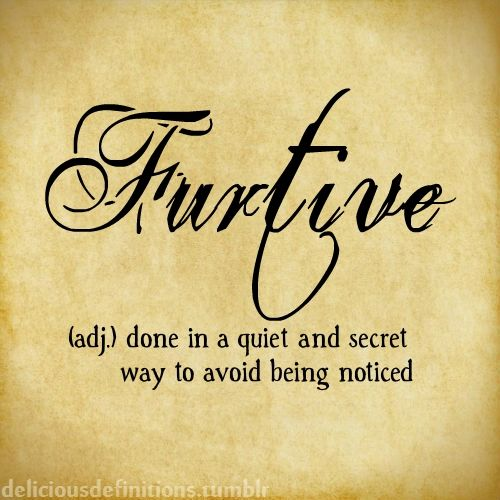 how to use furtive in a sentence
