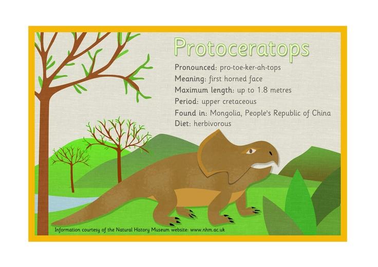 Dinosaur Fact Sheet u2013 Protoceratops #Dinosaurs Dinosaur Teaching - free fact sheet