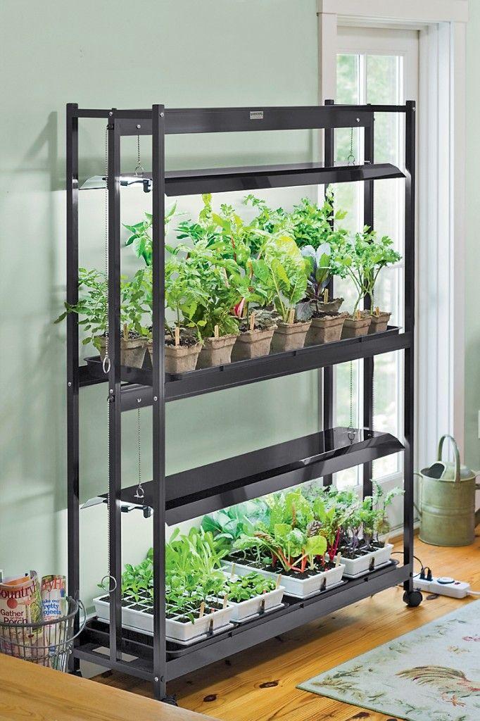 14 best gardening indoors images on pinterest gardening tips grow lights and indoor gardening. Black Bedroom Furniture Sets. Home Design Ideas