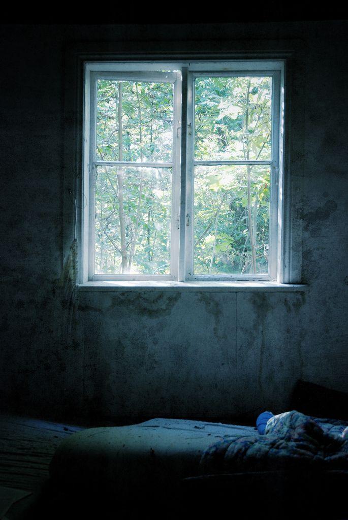 Window | Kruunuvuori