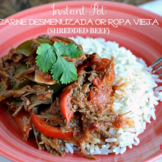 10 best nicaraguan food images on pinterest nicaraguan food make this easy nicaraguan inspired instant pot carne desmenuzada or ropa vieja shredded beef any day of the week in under 15 minutes forumfinder Choice Image