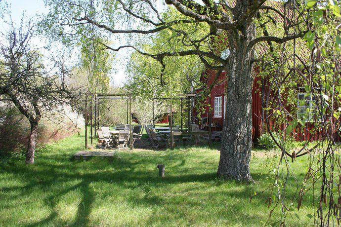Trädgård - Linneryd