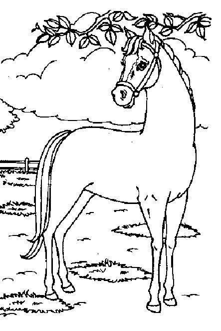 Coloring Pages Animals Horses : Best images about paarden tekeningen on pinterest bad