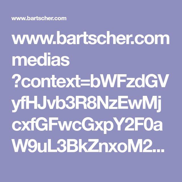 www.bartscher.com medias ?context=bWFzdGVyfHJvb3R8NzEwMjcxfGFwcGxpY2F0aW9uL3BkZnxoM2YvaDc0Lzg4MTc5MzYyNjkzNDIucGRmfDRjMWRlNDIzZjY5MjIzNjc0N2I3OTkwZTI3OGRhZDUzNGRkNmU2YjM1ZTU1NjBkODg0ODBmZjBiYjM0ZTJiODI