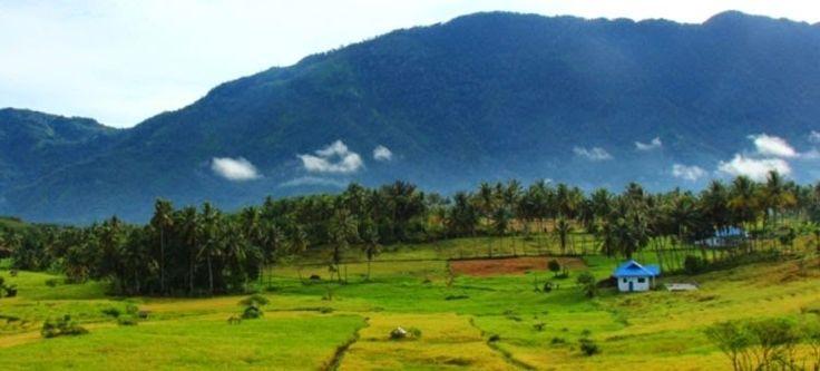 Lagu O Mandailing karya Willem Iskander Abdul Hakim Nasution Ali Asrun Siregar