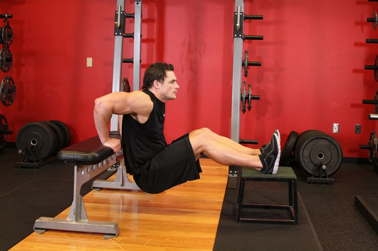 bench dips works out triceps, shoulders, and chest