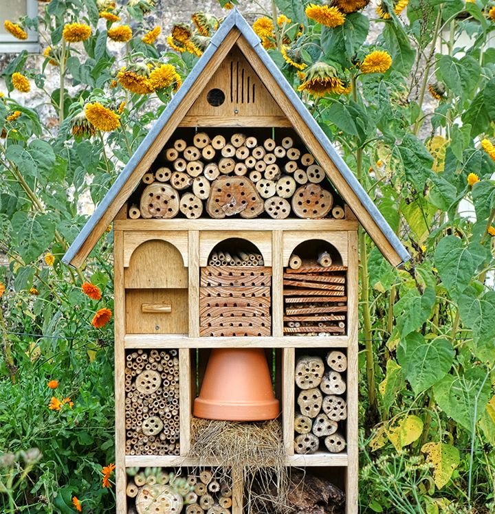 Een insectenhotel maken is vrij eenvoudig, eenmaal je weet welke kamertjes je moet voorzien om een insect te lokken. Bijen, hommels en wespen nestelen zich in buisjes of holle stengels, terwijl oorwurmen dan weer liever een hoopje stro ter beschikking hebben. Er zijn niet echt regels aan verbonden, je kunt zowat alle herbruikbare materialen combineren…