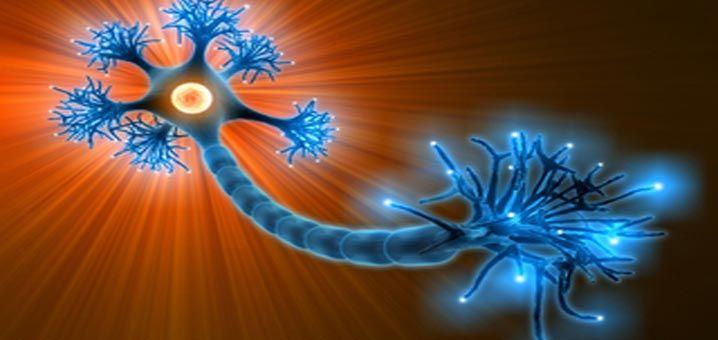 Traitements naturels contre pour la paralysie de Bell. Quelles pistes naturelles contre une paralysie faciale. Alimentation, suppléments…