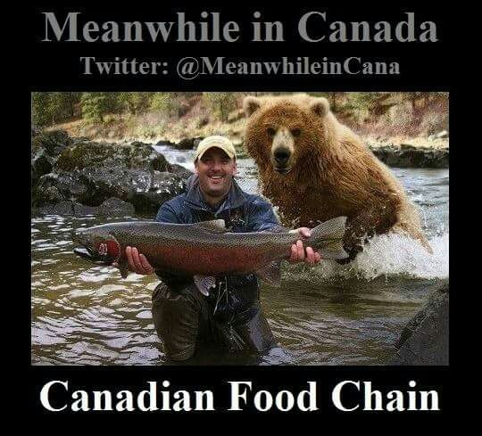 453 Best Images About Canadian On Pinterest Canada