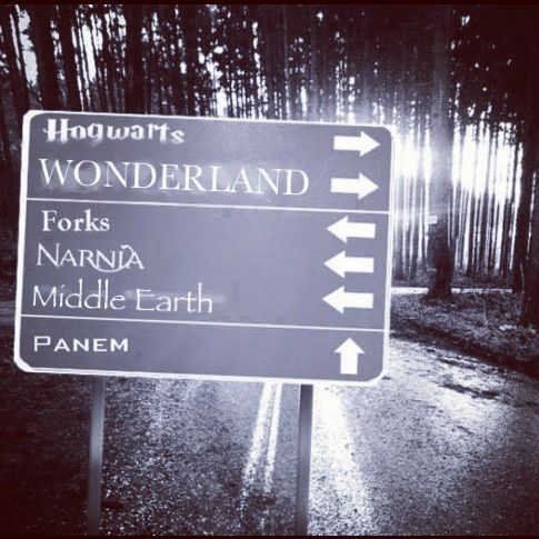 The Roads, Hogwarts, Forks, Reading Book, Wonder Places, Harry Potter, Roads Trips, Middle Earth, Narnia