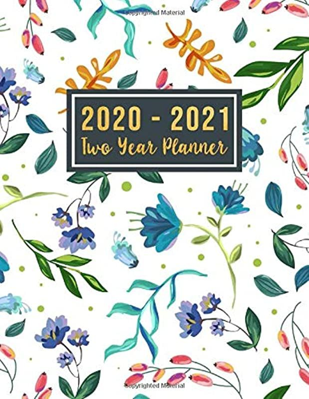 Free Download 2020 2021 Two Year Planner 2020 2021 See It Bigger Planner 24 Month Planner Calen Vigan Pdf Book Free
