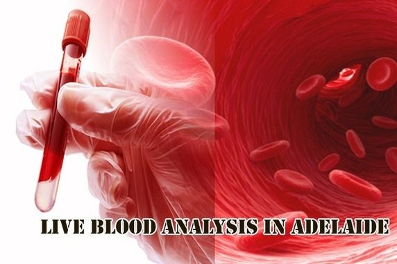 What Are the Advantages of Live Blood Analysis ... - Hyperbaric Oxygen Therapy in Adelaide - Quora